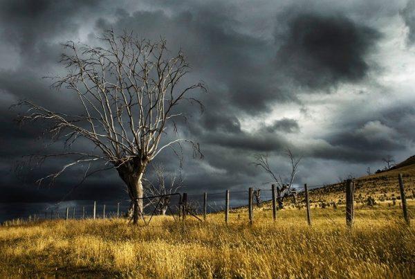 Egy kis GDPR elemzés: vihar előtti csend?